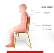 Entelo-Profilaktyka-zdrowia-388x220